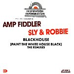 Amp Fiddler Black House (Paint The White House Black) (5-Track Maxi-Single)