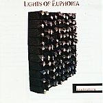 Lights Of Euphoria Brainstorm