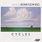 Stephen Gosling Cycles