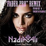 "Nadia Ali Crash And Burn (Steven Lee & Vincent Di Pasquale ""Fader Pro"" Remix)"