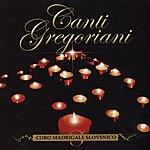 Coro Madrigale Slovenico Canti Gregoriani