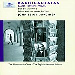 Michael Chance Bach, J.S.: Easter Cantatas BWV 6 & 66
