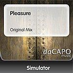 Simulator Pleasure (Original Mix)
