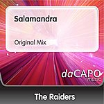 The Raiders Salamandra (Original Mix)