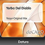 Datura Yerba Del Diablo (Yaqui-Original Mix)