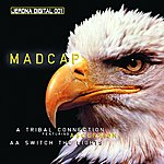 Madcap Tribal Connection/Switch The Lights