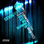 Cevin Fisher You Got Me Burning Up! 2008 Mixes