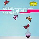 Orchestra Del Maggio Musicale Fiorentino Donizetti: L'elisir d'amore