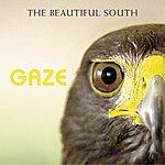 The Beautiful South Gaze