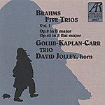 David Jolley Brahms: Five Trios, Volume I