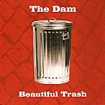 Dam Beautiful Trash