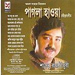 Rabindranath Tagore Pagla Haowa