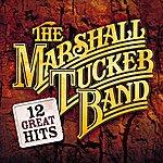 The Marshall Tucker Band 12 Great Hits