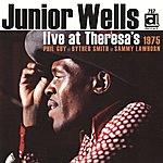 Junior Wells Live at Theresa's 1975