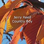 Jerry Reed Country Boy