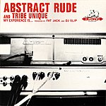 Abstract Rude My Experience Is....