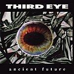 The Third Eye Ancient Future