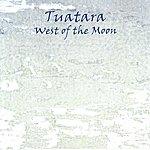 Tuatara West of the Moon