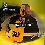 Big Joe Williams The Best Of