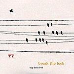 Ty Break The Lock