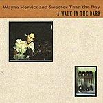 Wayne Horvitz A Walk In The Dark