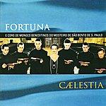 Fortuna Caelestia
