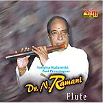 Dr. N. Ramani Dr. N. Ramani Flute - 06