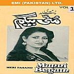 Munni Begum Meri Pasand  Vol. 1