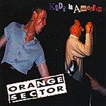 Orange Sector Kids in America