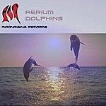 The Aerium Dolphins