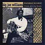 Big Joe Williams These Are My Blues