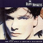 The Blow Monkeys She Was Only A Grocer's Daughter