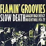 The Flamin' Groovies Slow Death