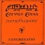Corvus Corax Congregatio - Zumpfkopule