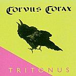 Corvus Corax Tritonius