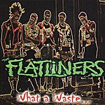 Flatliners What a Waste