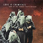 Love Is Chemicals Song of the Summer Youth Brigade