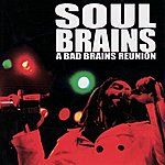 Soul Brains A Bad Brains Reunion: Live At Maritime Hall SF