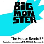 I.D. Big Monster - The House Remix EP