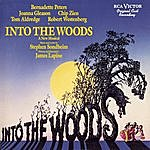 Musical Cast Recording Into The Woods