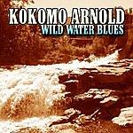 Kokomo Arnold Wild Water Blues