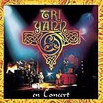 Tri Yann Tri Yann en concert
