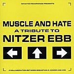 Muscle & Hate A Tribute To Nitzer Ebb