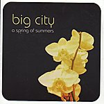 Big City Orchestra A spring of summers
