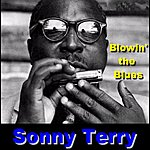 Sonny Terry Blowing The Blues