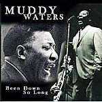 Muddy Waters Been Down So Long