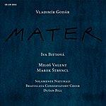 Iva Bittová Godár: Mater