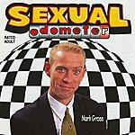 Mark Gross Sexual Odometer