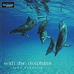 John 'Rabbit' Bundrick With the Dolphins