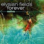 Sativa Elysian Fields Forever